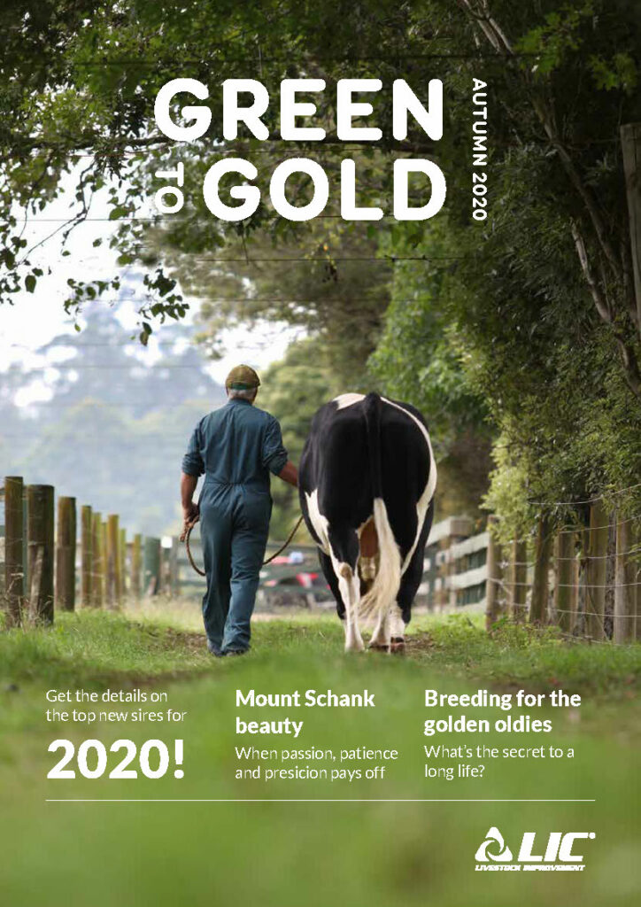 LIC Australia Green to Gold - Autumn 2020 Cover