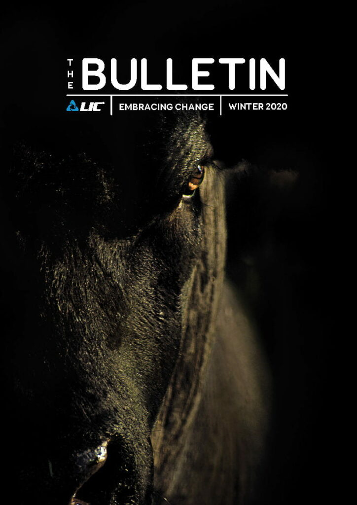 The Bulletin Winter 2020 Cover